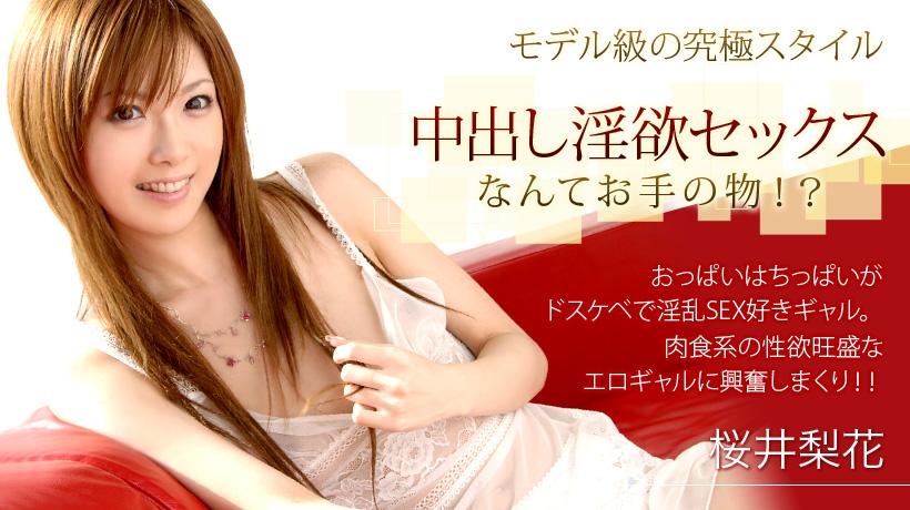 Jav Online 22120 Sakurai Rika xxx