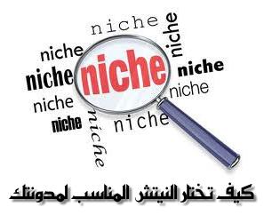 كيف تختار النيتش Niche المناسب لمدونتك