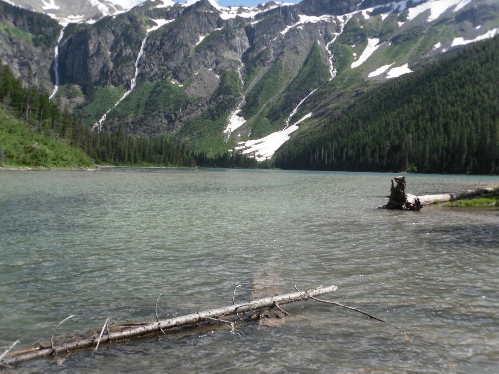 Virginia fly fishing for Fly fishing glacier national park