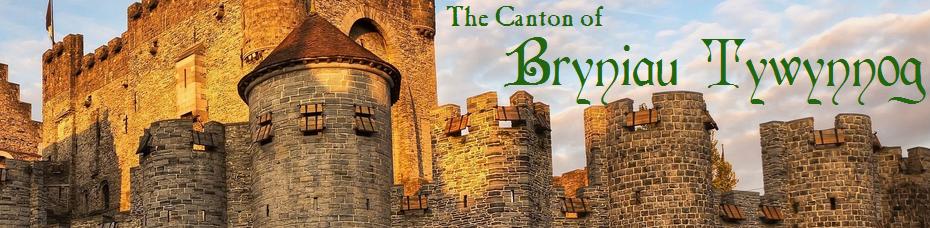 Canton of Bryniau Tywynnog