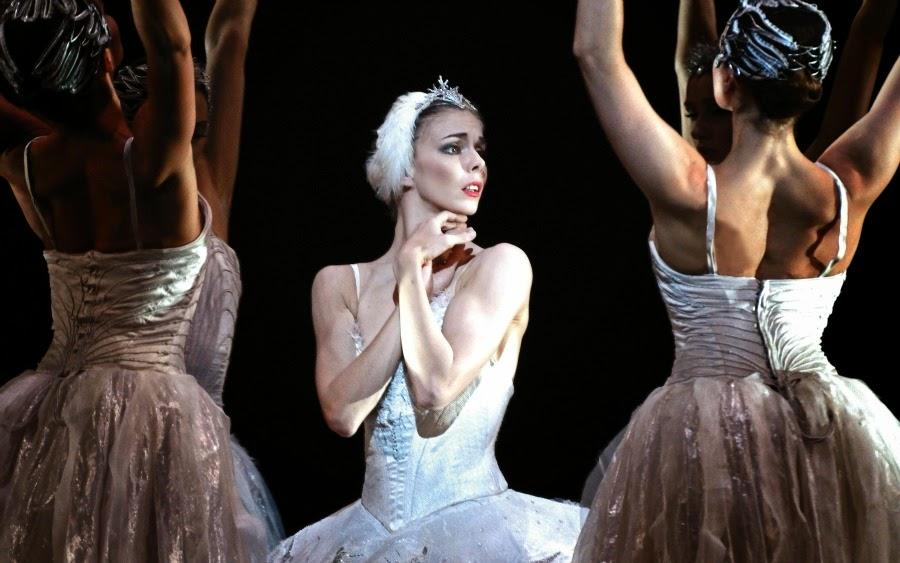 Image result for royal ballet lago cisnes