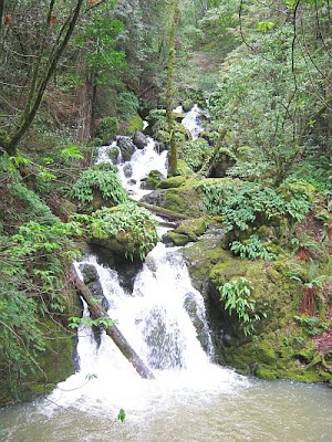 waterfall at Cataract Falls Trail, Marin County