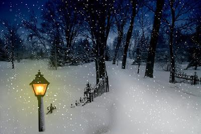 Invierno con paisaje cubierto de nieve