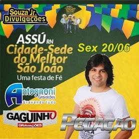 BAIXE FORRÓ DA PEGAÇÃO NO SJA 2014
