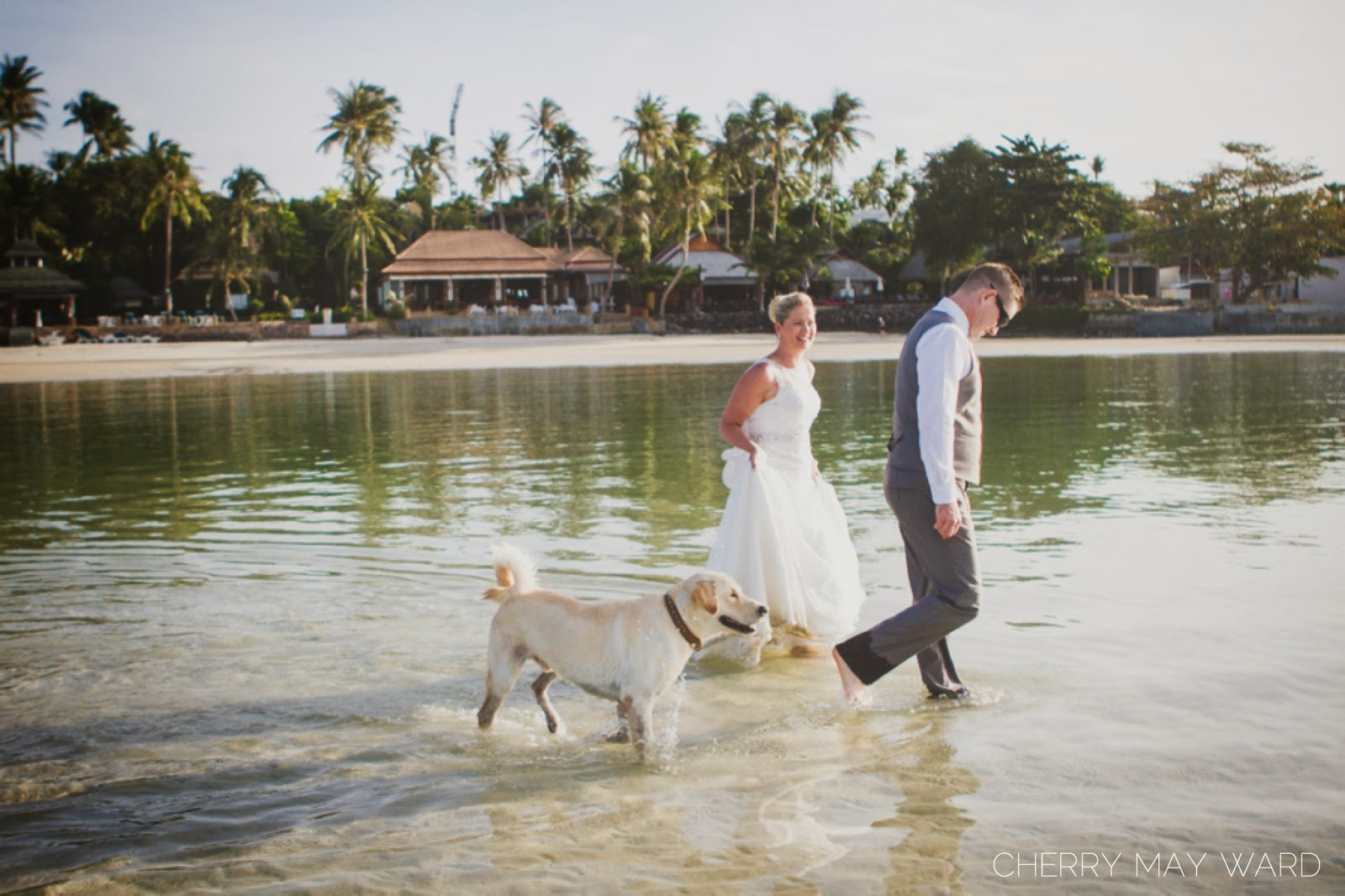 dog in wedding pictures, Koh Samui Wedding, trash the dress Samui