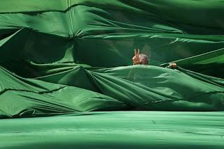 Du vert, du vert, du vert partout!  Libia+verde