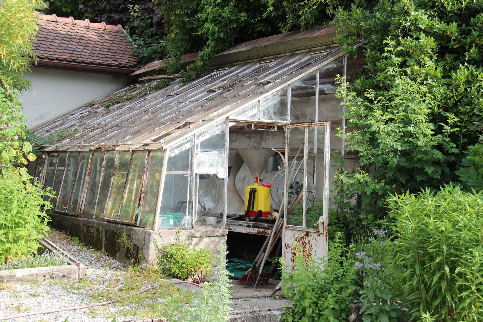 Bilder vom Lac Leman   Home and Garden