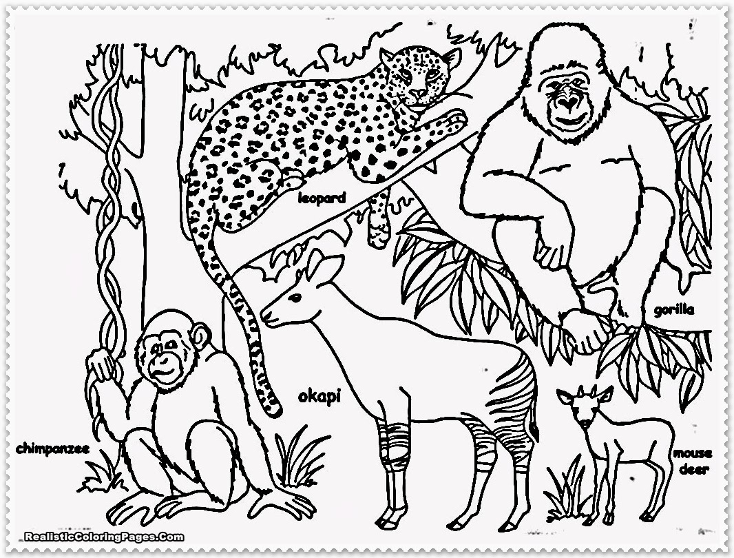 simple jungle animal coloring pages - photo#32