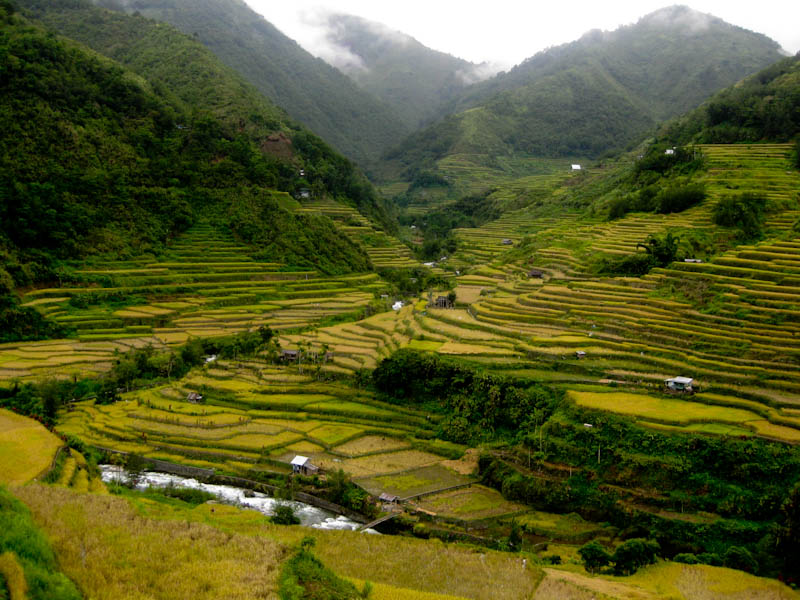 The official blog site of sen kiko pangilinan save the for Terracing definition in agriculture
