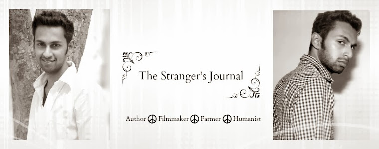 The Stranger's Journal