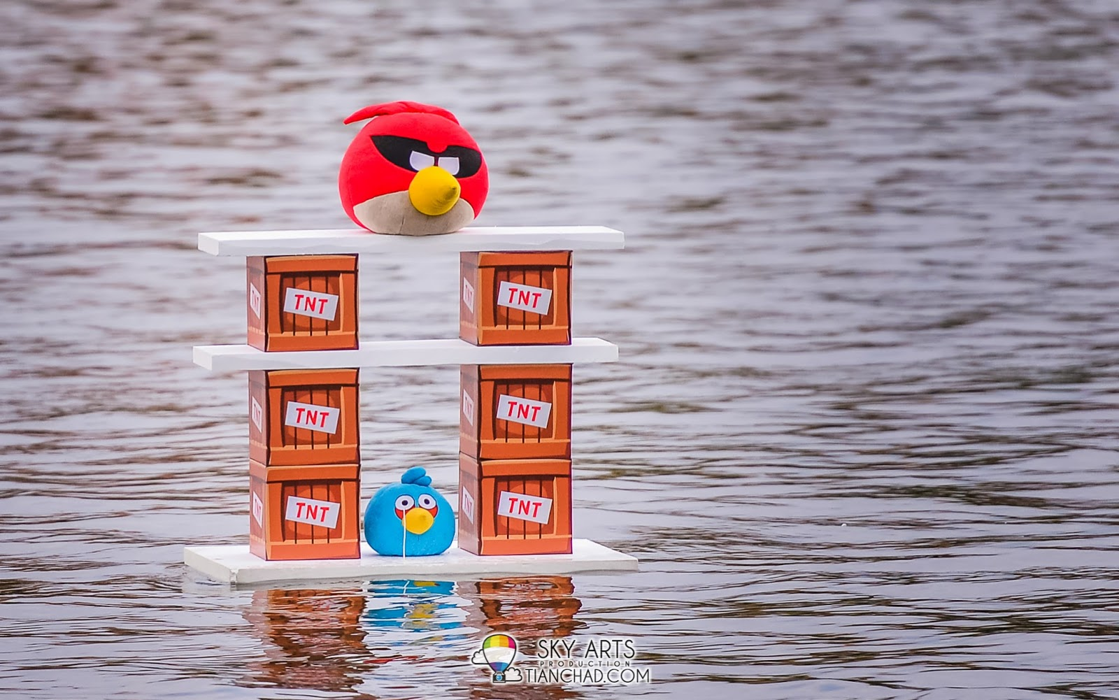 Angry Birds with TNT blocks floating on the water surface