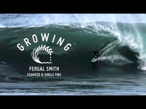 Fergal Smith - Growing Seaweed Single Fins - Episode 7