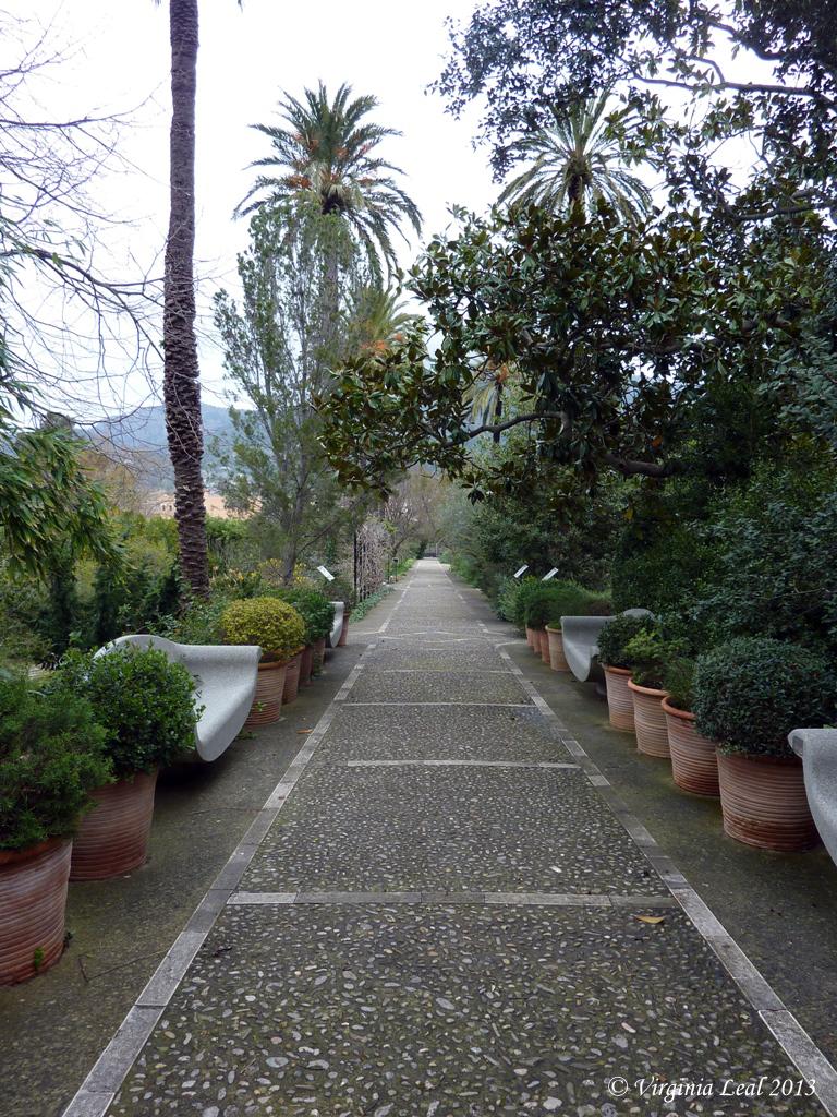 El jard n bot nico de s ller mallorca treasure blog for Jardin botanico soller