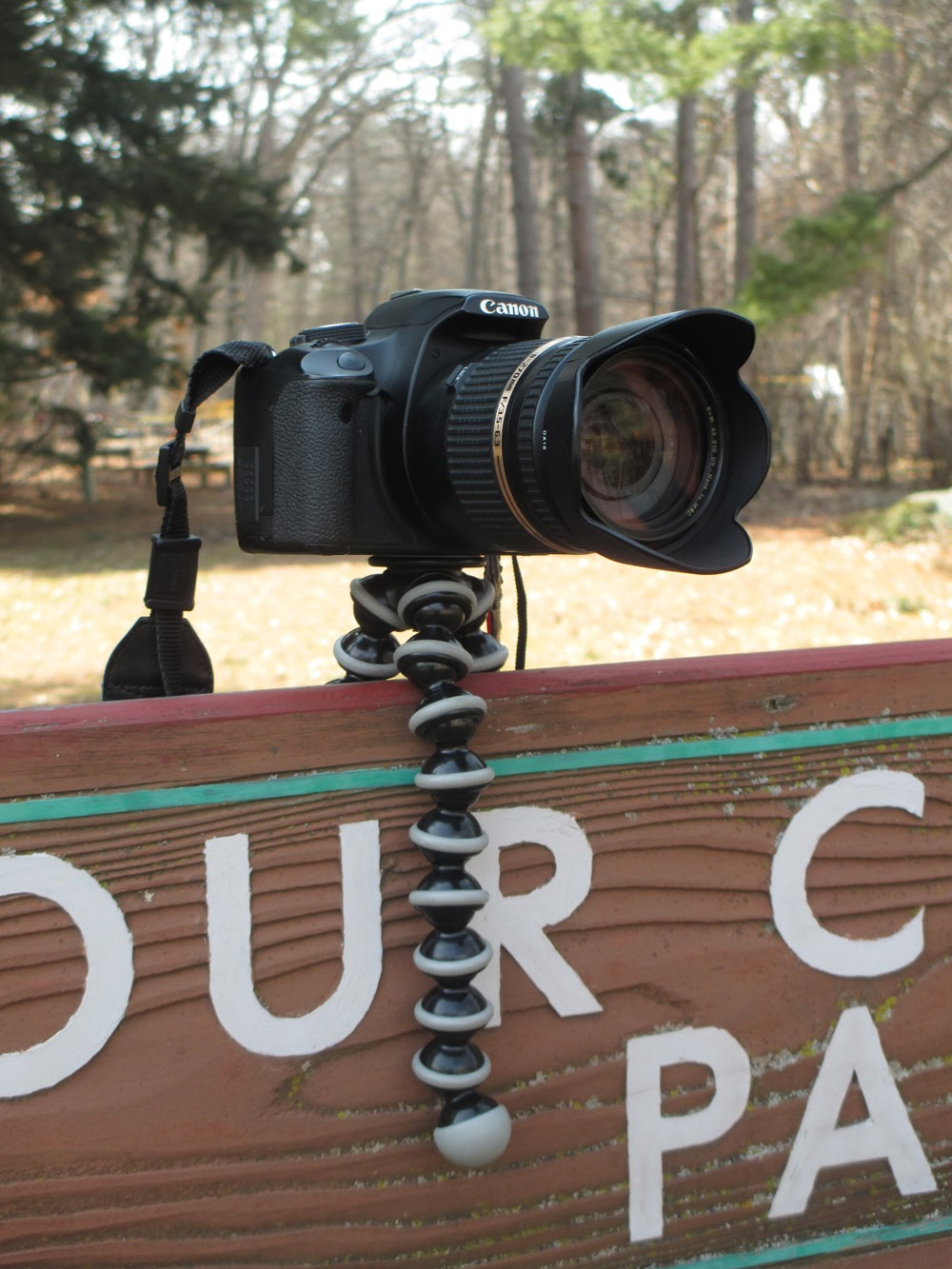 Joby GorilladPod Tripod Review | Boost Your Photography