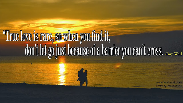 Quotes About True Love Wallpapers