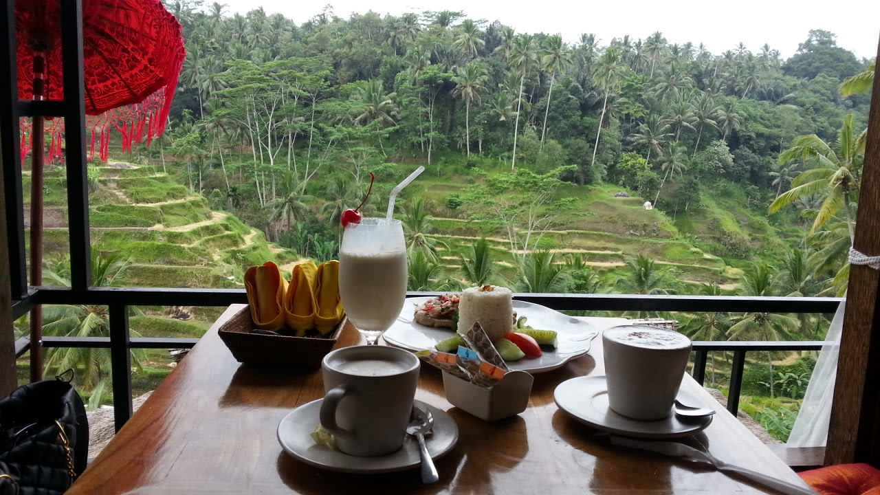 The best tourism in bali terrace padi cafe tegalalang ubud for Tegalalang rice terrace ubud