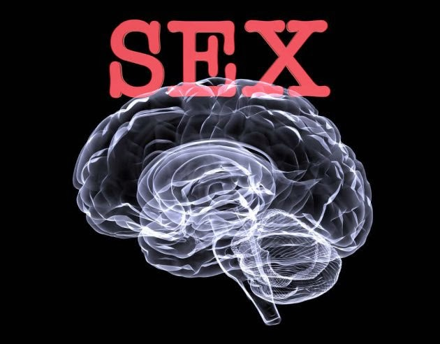 hombre en sexo: