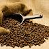 Kopi-kopi Terbaik di Dunia: Dari Kotoran Musang hingga Kotoran Gajah