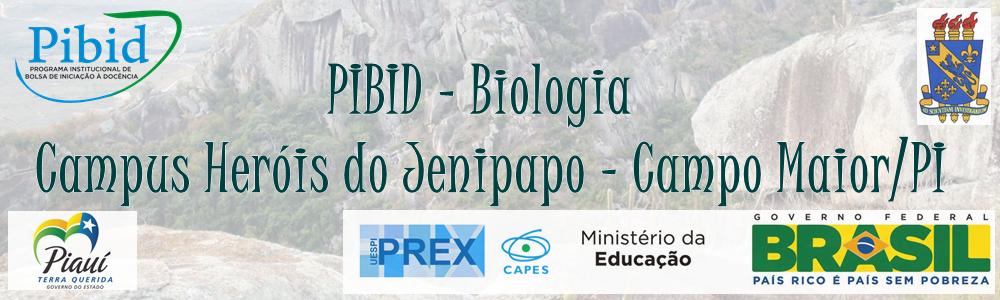 PIBID - Biologia