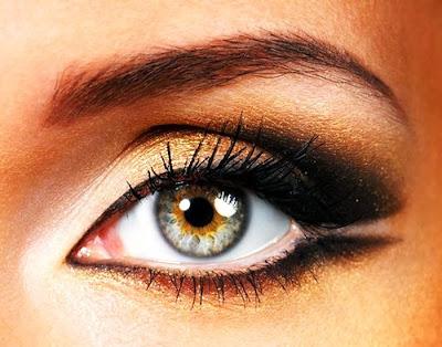 Absorption For Eye Health
