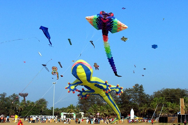 Jodhpur International Desert Kite Festival - Things to do in Jodhpur