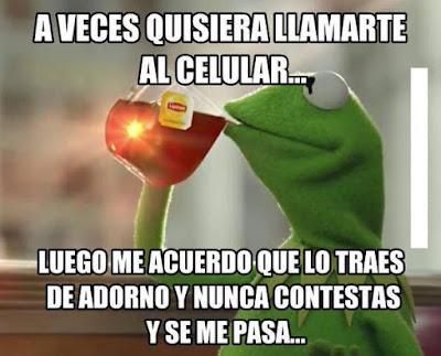 la rana rene los mejores memes