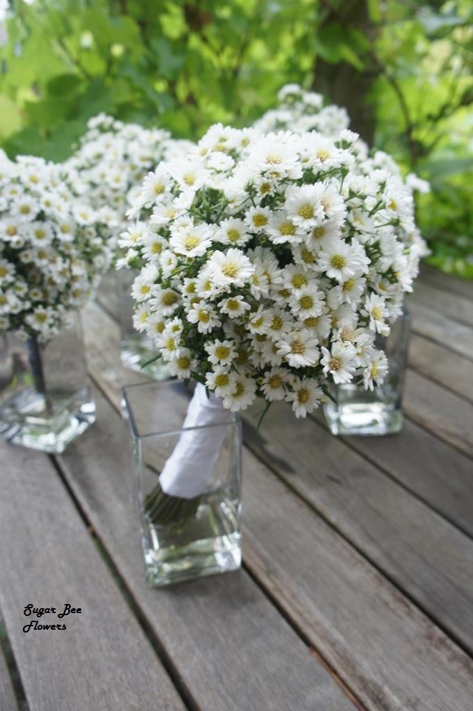 daisy wedding bouquet daisy wedding bouquet how cute sweet dainty are