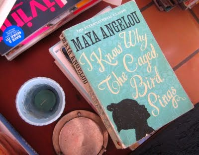 the struggles within in i know why the caged bird sings by maya angelou I know why the caged bird sings underscores meaning through the stylistic details that illuminate its themes and action angelou utilizes literary devices to em.