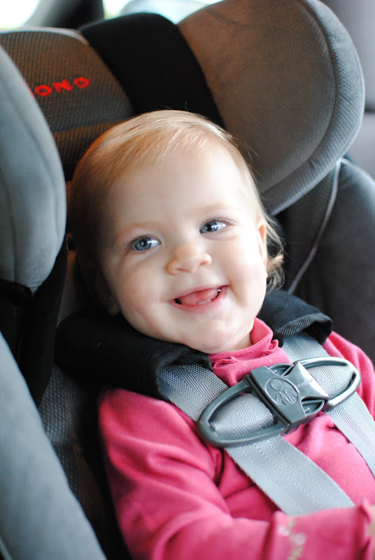 Diono Radian RXT Car Seat Review And Giveaway