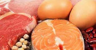 Makanan sumber protein untuk diet
