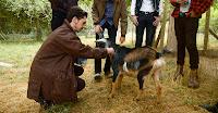 slug guts goat
