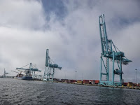 cranes along st johns river icw