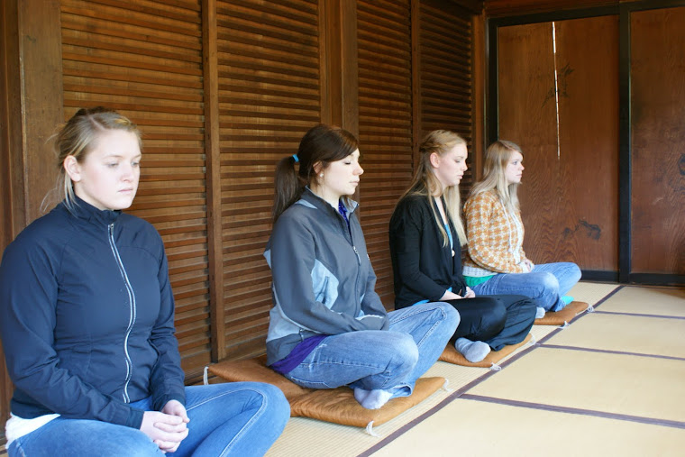 Zen Meditation Class and Dharma Talk in English