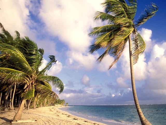 Imag Republica dominicana Paisaje Natural_5