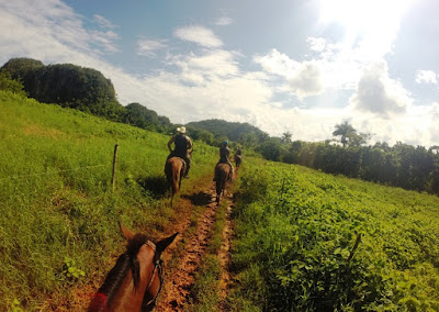 enlacima-de-excursion-a-caballo-por-el-valle-de-vinales-en-cuba