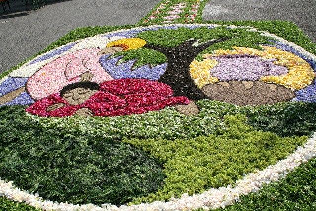 Todo con las flores decorar crear degustar cuidar las mejores alfombras - Alfombras portugal ...