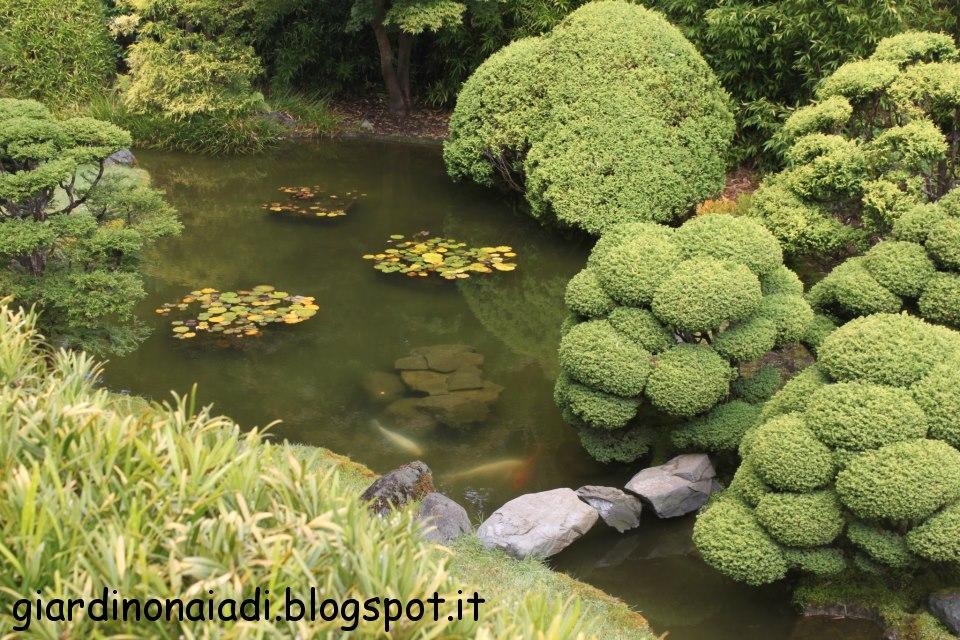 Il giardino delle naiadi dal giappone il giardino ideale for Laghetto i giardini