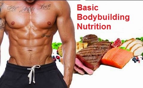 Image result for Basic Bodybuilding Nutrition