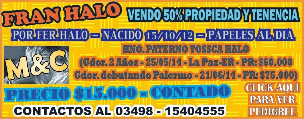 FRAN HALO - 01-07-14