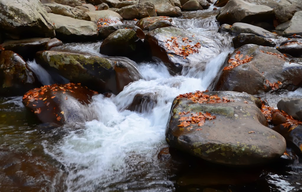 Stream Flowing Around rocks