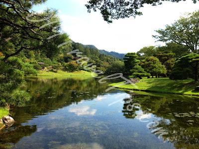 Yokuryuchi Pond last one