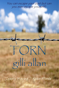 TORN by Gilli Allan