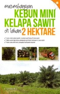 Membangun Kebun Mini Kelapa Sawit Di Lahan 2 Hektare. Kotabumi Lampung Utara
