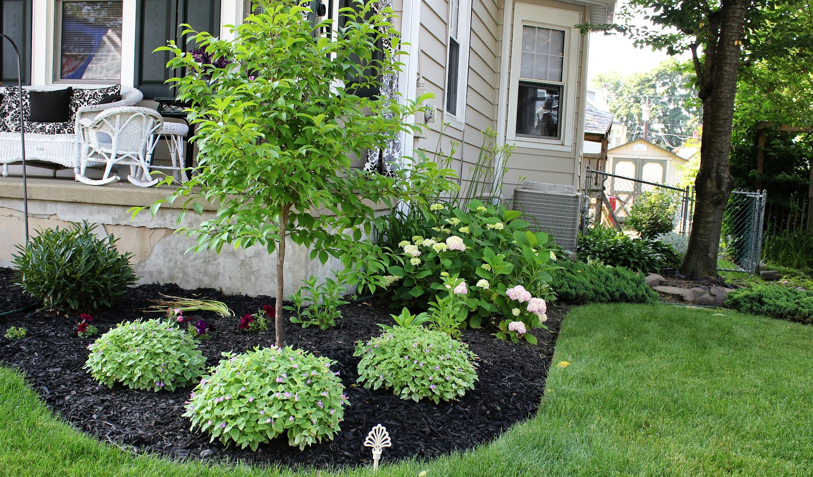 Bleu hydrangea may 2012 for Flower bed designs for front of house