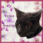 Fiona Forever