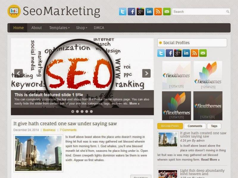 SeoMarketing - Free Wordpress Theme