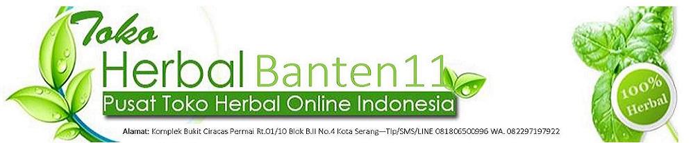 Banten11