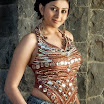 Tamil Actress Namitha Photo Gallery!