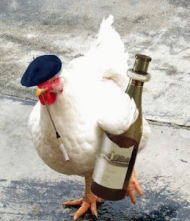 Funny Chicken Drinker Images