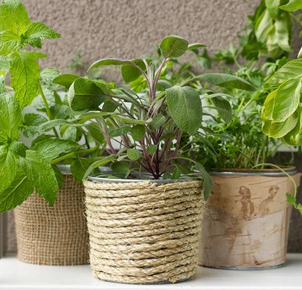 DIY herb planters